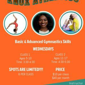 gymnastics at carver
